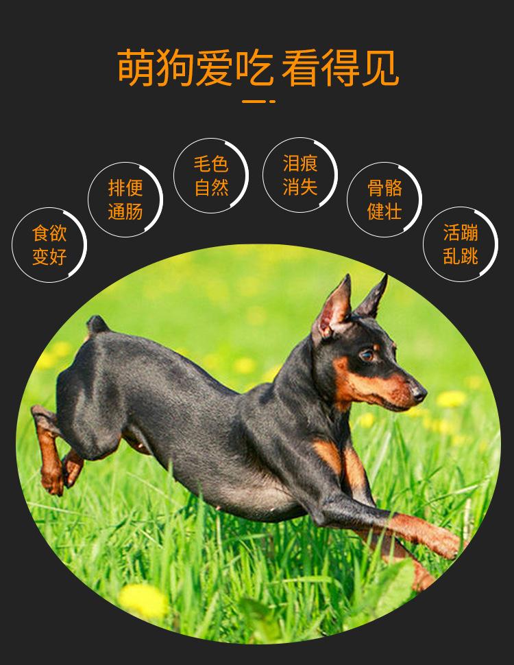 全犬全期犬粮20KG-优化_06